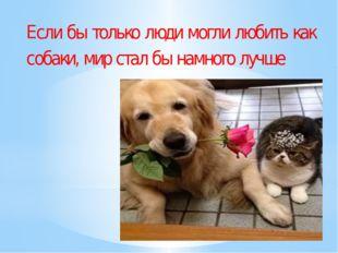 Если бы только люди могли любить как собаки, мир стал бы намного лучше