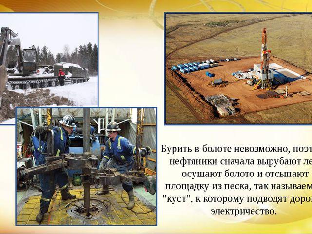Бурить в болоте невозможно, поэтому нефтяники сначала вырубают лес, осушают б...