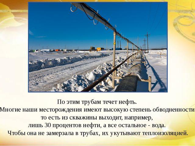 По этим трубам течет нефть. Многие наши месторождения имеют высокую степень о...