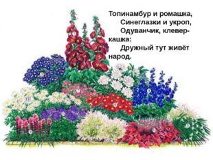 Топинамбур и ромашка,   Синеглазки и укроп,   Одуванчик, клевер-кашк