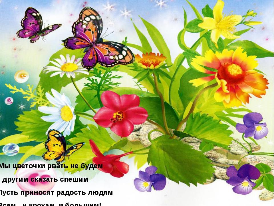 Мы цветочки рвать не будем И другим сказать спешим Пусть приносят радость л...