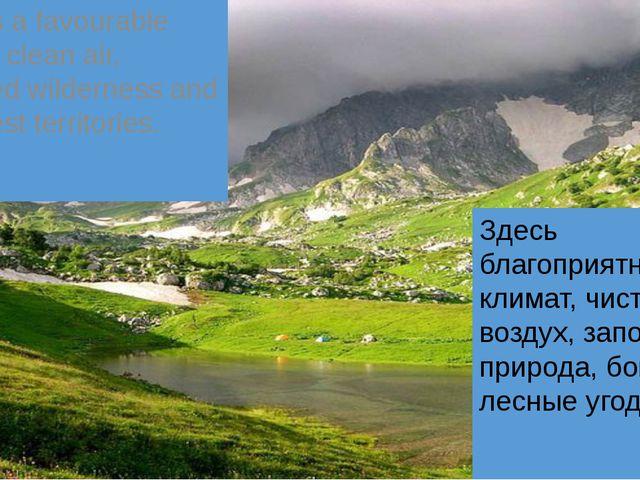 Здесь благоприятный климат, чистый воздух, заповедная природа, богатые лесные...