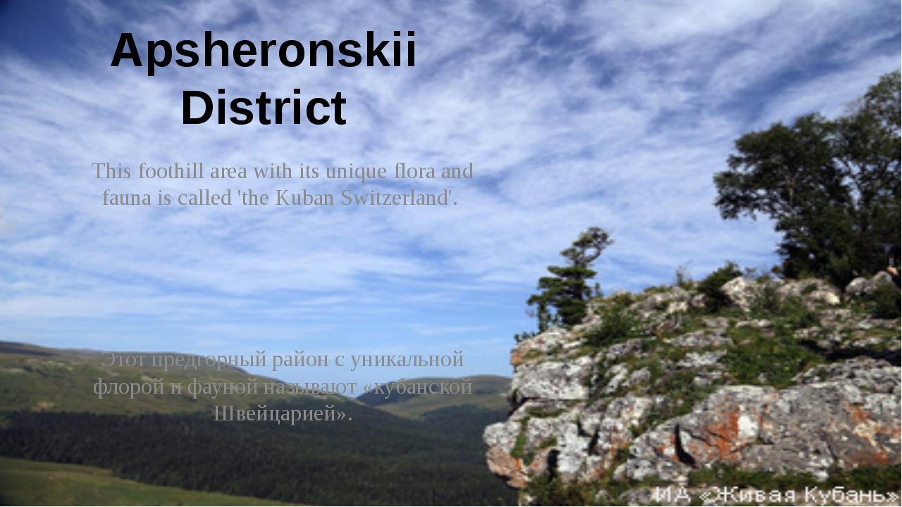 Apsheronskii District This foothill area with its unique flora and fauna is c...