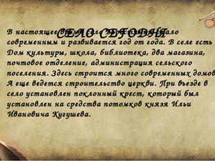 СЕЛО СЕГОДНЯ В настоящее время село Берестянки стало современным и развиваетс