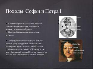 Походы Софьи и Петра I Крымцы осуществляли набег на земли севернее Причерномо