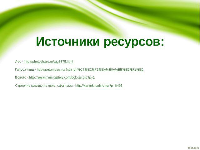Источники ресурсов: Лес - http://photoshare.ru/tag5575.html Голоса птиц - htt...