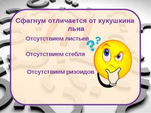 Источники: Фон: http://vitushkina.uim5.ru/proverka.html Смайлы: http://forum