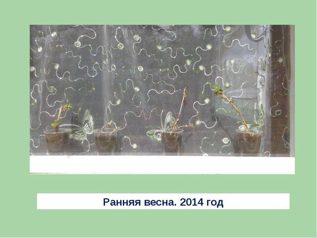 Ранняя весна. 2014 год
