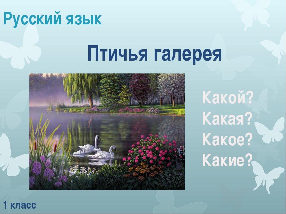 Русский язык 1 класс Какой? Какая? Какое? Какие? Птичья галерея