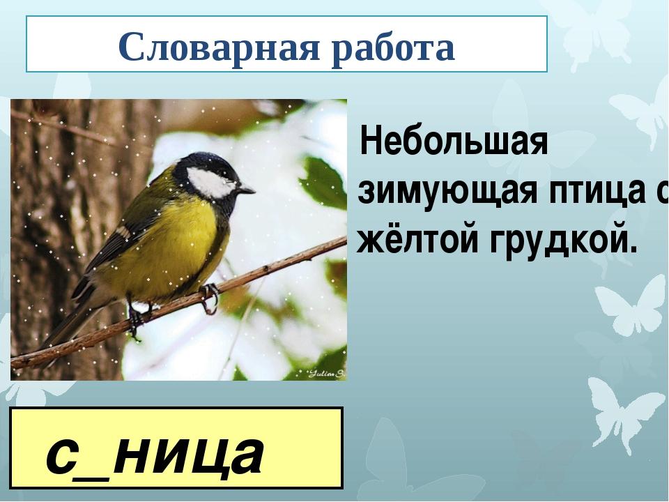 с_ница Небольшая зимующая птица с жёлтой грудкой. Словарная работа