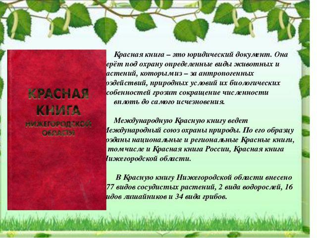 Красная книга – это юридический документ. Она берёт под охрану определенные...