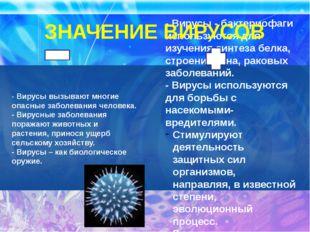 - Вирусы вызывают многие опасные заболевания человека. - Вирусные заболевания
