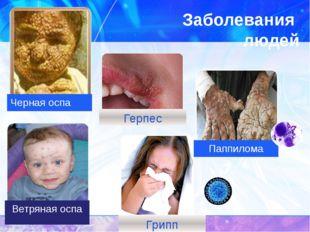 Заболевания  людей