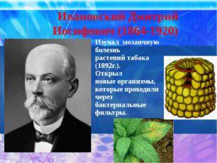 Ивановский Дмитрий Иосифович (1864-1920)