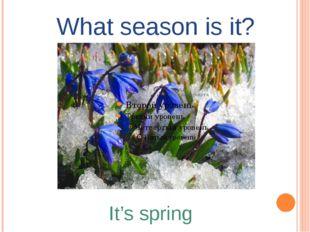 What season is it? It's spring