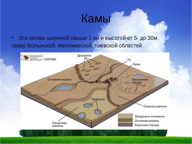 Камы Это холмы шириной свыше 1 км и высотой от 5- до 30м север Волынской, Жит...