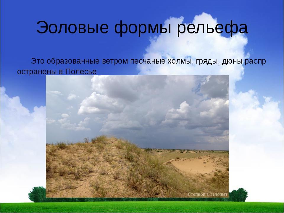 Эоловые формы рельефа Это образованные ветром песчаные холмы, гряды, дюны рас...