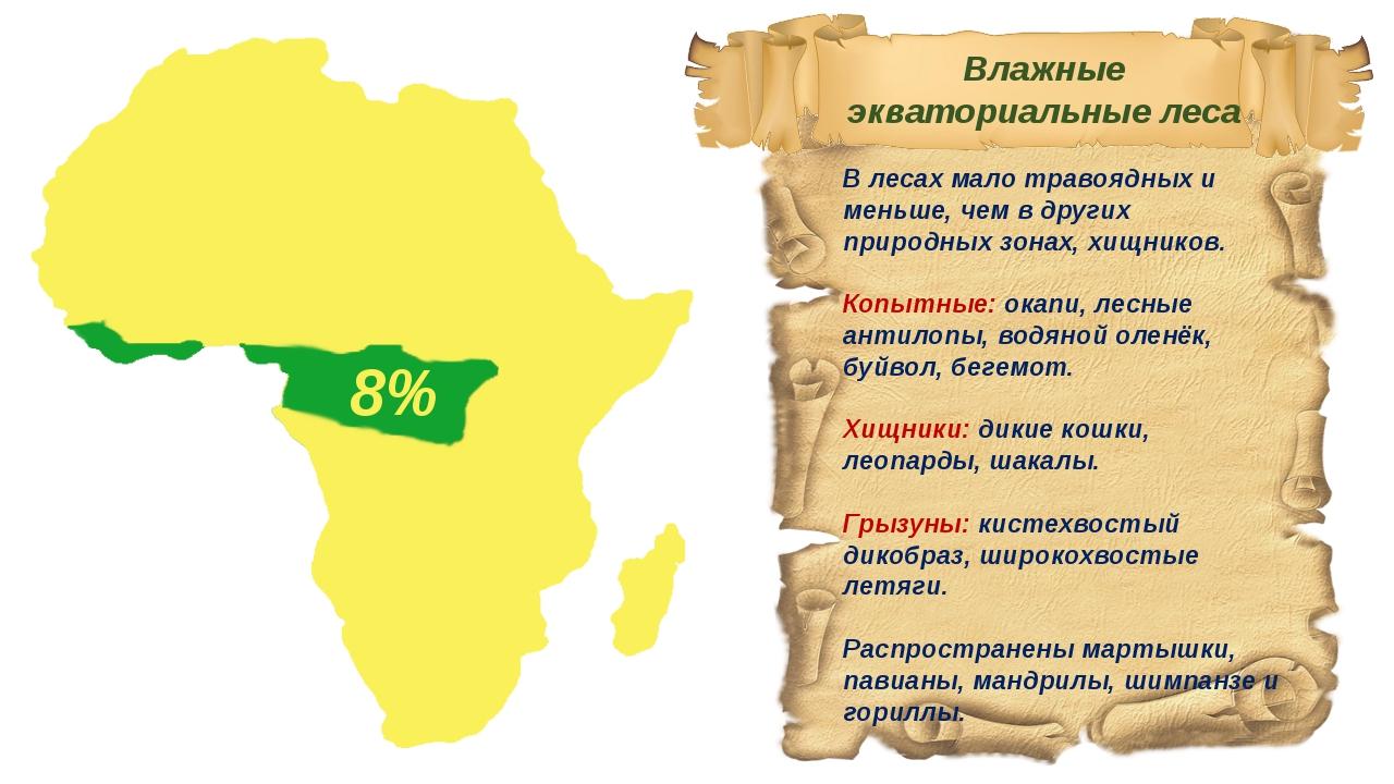 В лесах мало травоядных и меньше, чем в других природных зонах, хищников. Коп...