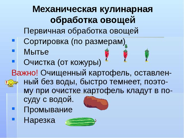 Механическая кулинарная обработка овощей Первичная обработка овощей Сортиров...
