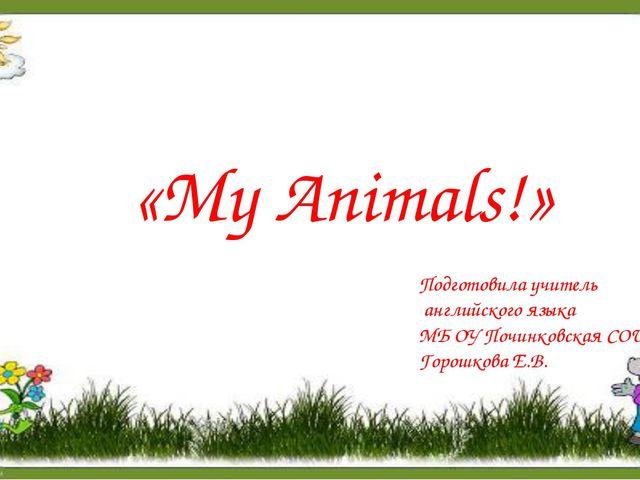 «My Animals!» Подготовила учитель английского языка МБ ОУ Починковская СОШ Го...