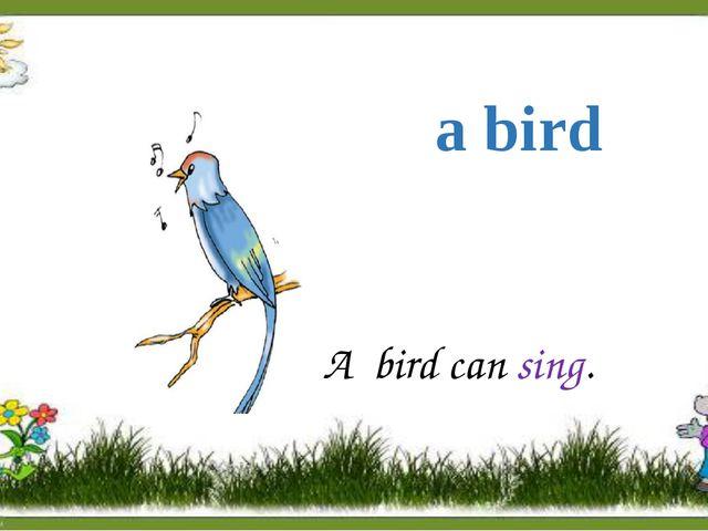 a bird A bird can sing.