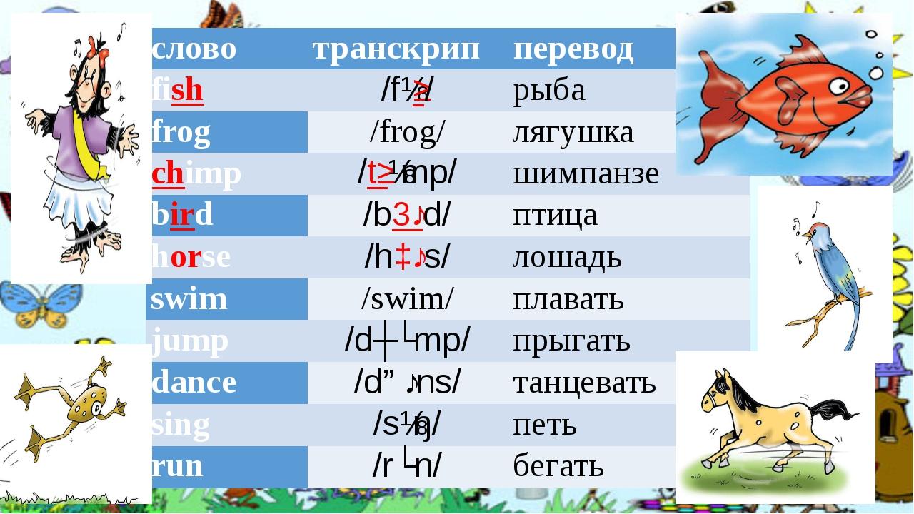слово транскрип перевод fish /fɪʃ/ рыба frog /frog/ лягушка chimp /tʃɪmp/ шим...