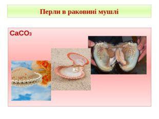 Перли в раковині мушлі CaCO3