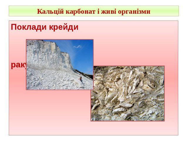 Кальцій карбонат і живі організми Поклади крейди ракушняк