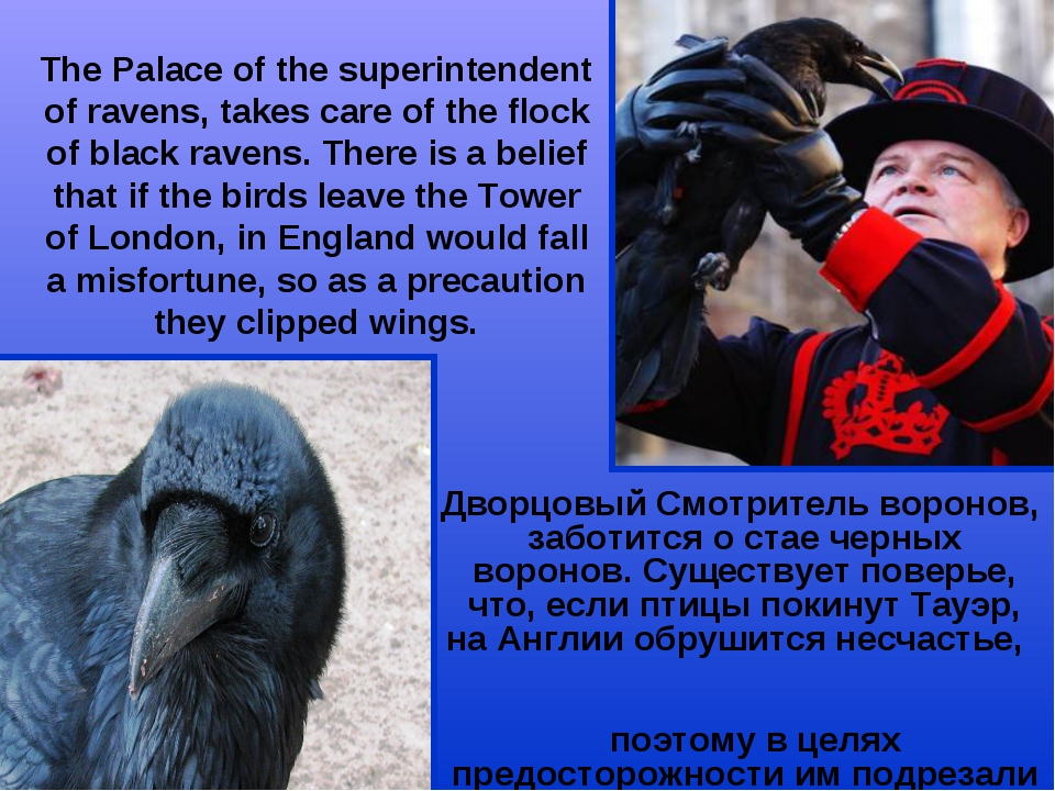 The Palace of the superintendent of ravens, takes care of the flock of black...