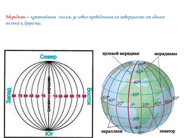 Меридиан – кратчайшая линия, условно проведенная на поверхности от одного по...