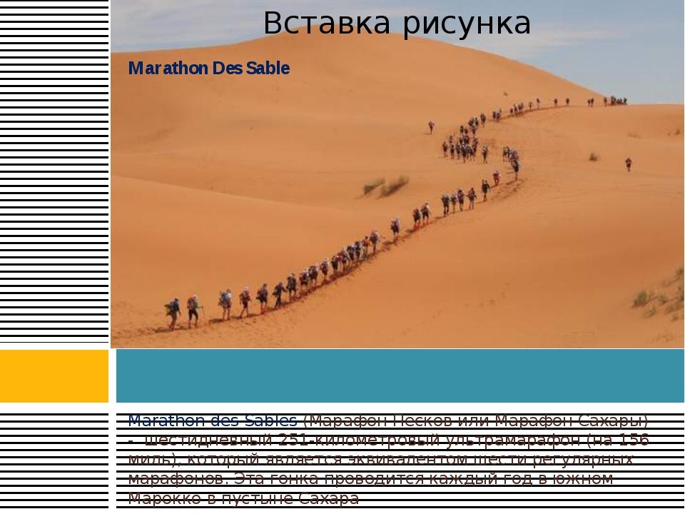 Marathon des Sables (Марафон Песков или Марафон Сахары) - шестидневный 251-к...