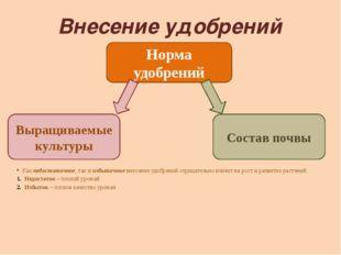 Внесение удобрений Как недостаточное, так и избыточное внесение удобрений отр