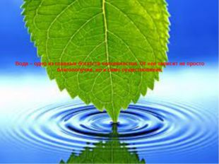 Вода – одно из главных богатств человечества. От нее зависит не просто благоп