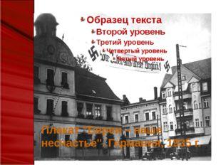 """Плакат """"Евреи – наше несчастье"""". Германия, 1935 г."""