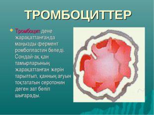 ТРОМБОЦИТТЕР Тромбоцит дене жарақаттанғанда маңызды фермент ромбопластин бөле