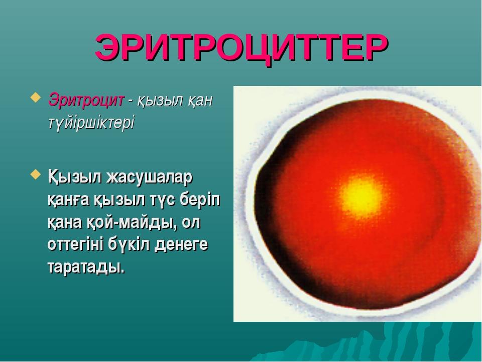 ЭРИТРОЦИТТЕР Эритроцит - қызыл қан түйіршіктері Қызыл жасушалар қанға қызыл т...