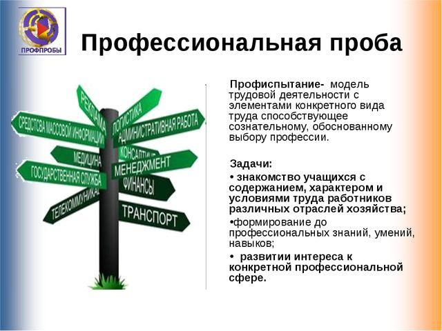 Профессиональная проба Профиспытание- модель трудовой деятельности с элемента...