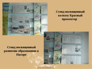 Стенд посвященный колхозу Красный прожектор Стенд посвященный развитию образо