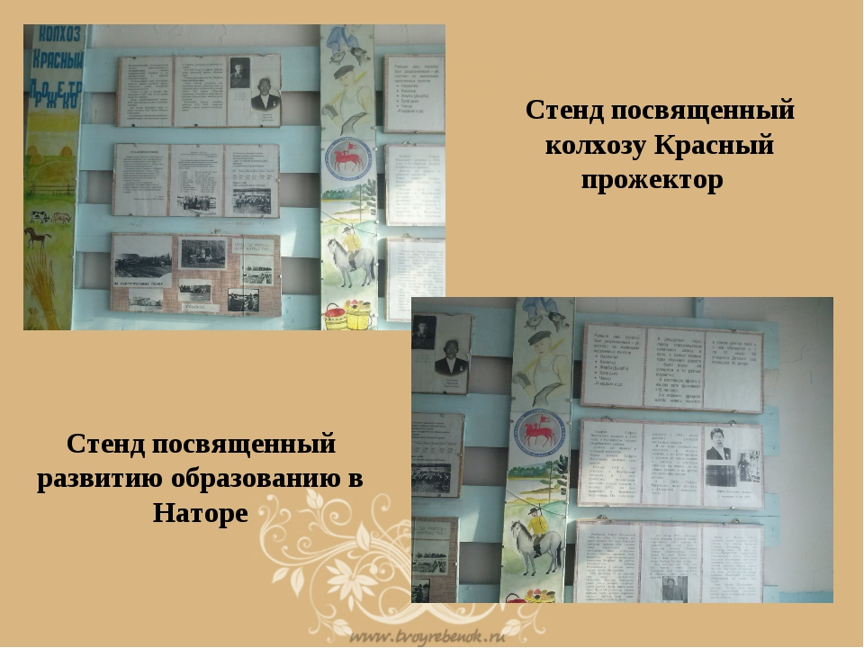 Стенд посвященный колхозу Красный прожектор Стенд посвященный развитию образо...