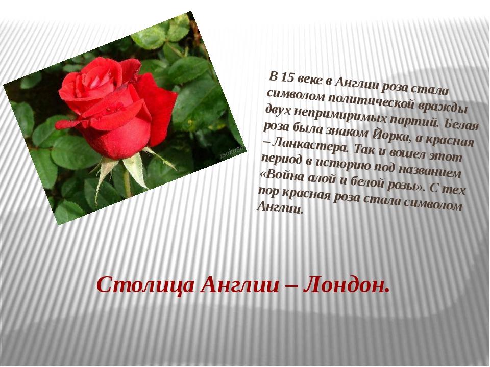 В 15 веке в Англии роза стала символом политической вражды двух непримиримых...