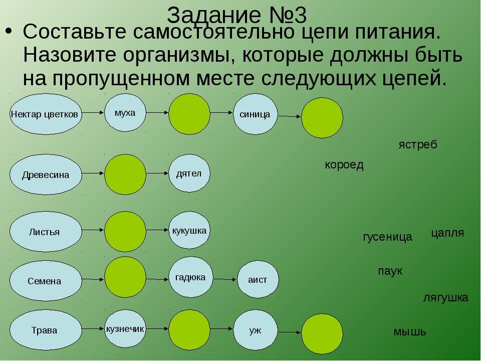 Задание №3 Составьте самостоятельно цепи питания. Назовите организмы, которые...