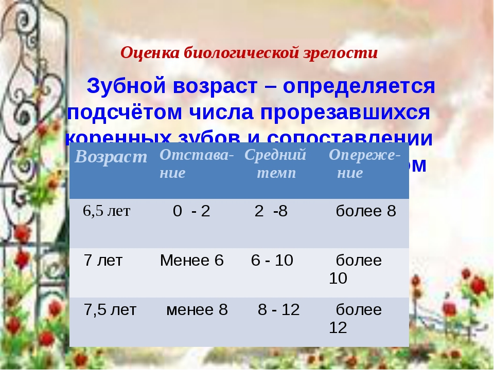Оценка биологической зрелости Зубной возраст – определяется подсчётом числа...