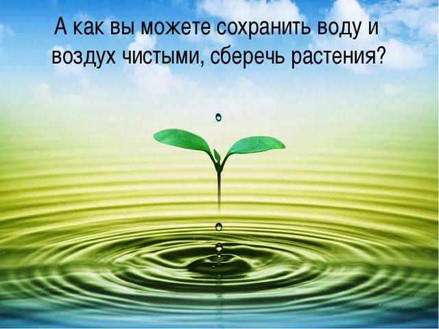 А как вы можете сохранить воду и воздух чистыми, сберечь растения?