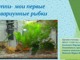 Проект ученицы 3- а класса МБОУ СОШ №2 г. Лобня Камневой Маргариты Руководит