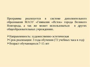Программа реализуется в системе дополнительного образования МАОУ «Гимназия «