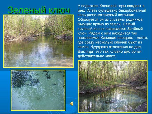 Зеленый ключ У подножия Кленовой горы впадает в реку Илеть сульфатно-бикарбон...