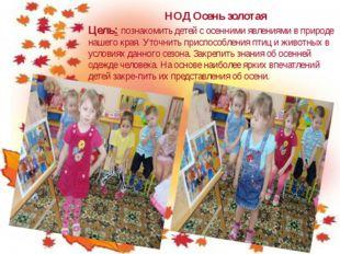 НОД Осень золотая Цель: познакомить детей с осенними явлениями в природе наше