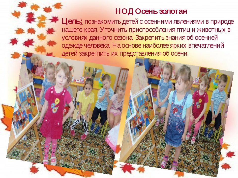 НОД Осень золотая Цель: познакомить детей с осенними явлениями в природе наше...