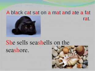A black cat sat on a mat and ate a fat rat. She sells seashells on the seasho