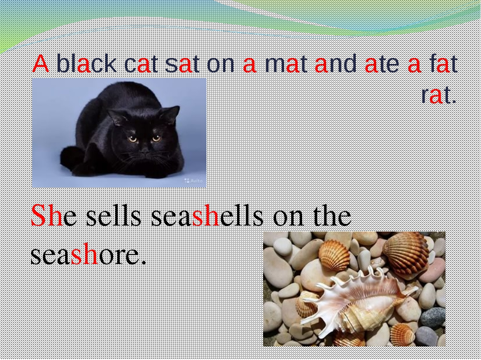 A black cat sat on a mat and ate a fat rat. She sells seashells on the seasho...